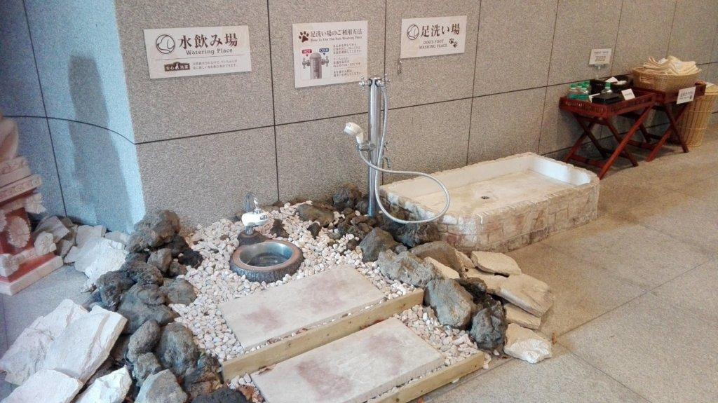 愛犬お宿エントランスのワンコ水飲み場と足洗い場
