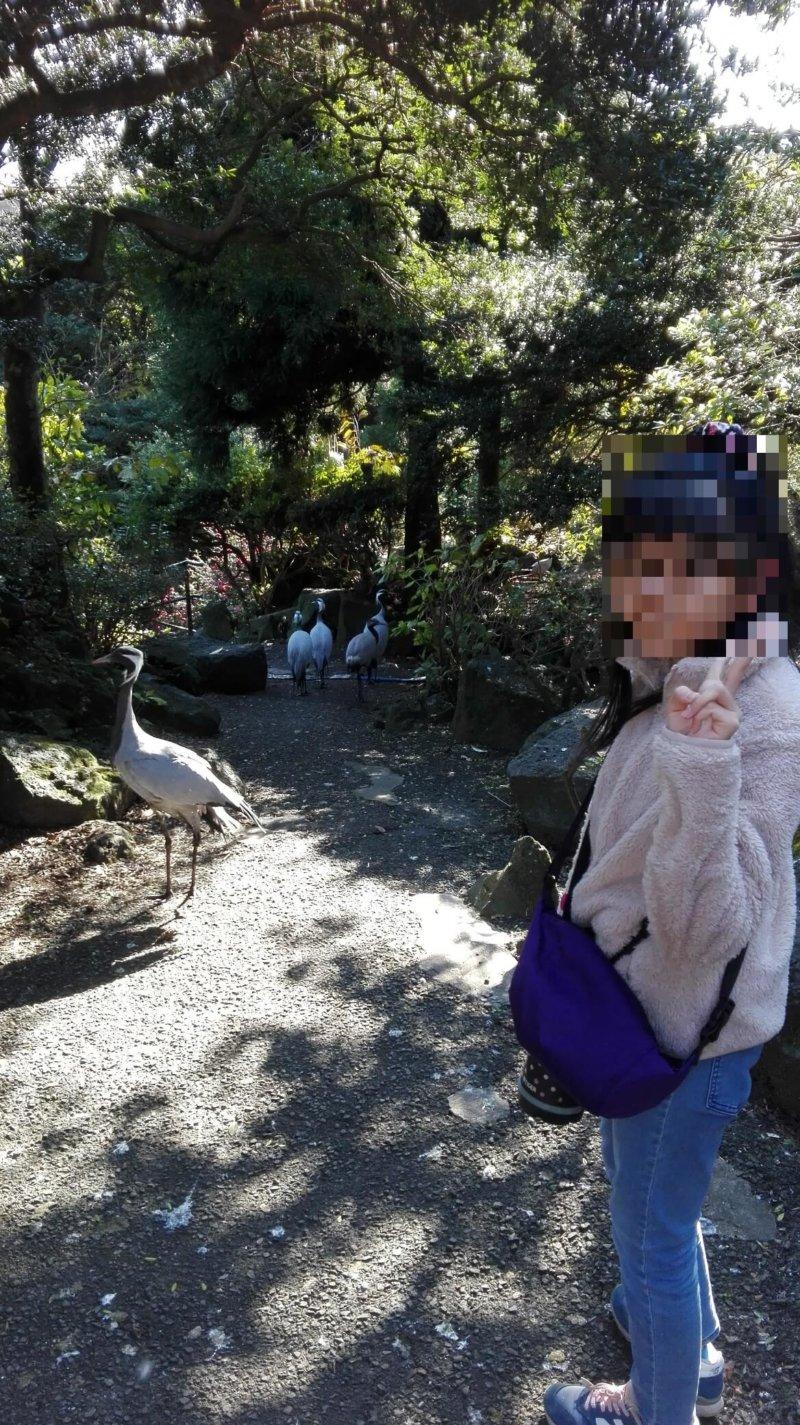 伊豆シャボテン動物公園のバードパラダイス