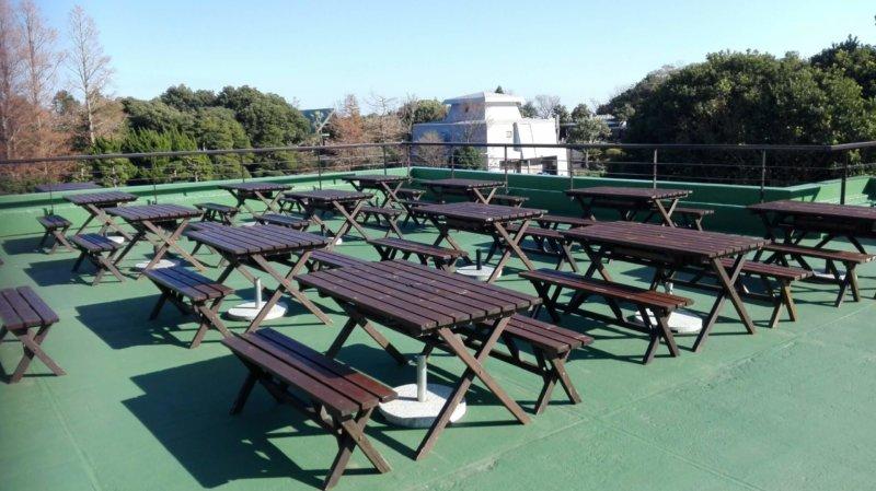 伊豆シャボテン動物公園の和食処 花むすびのテラス席
