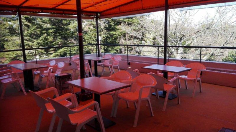 伊豆シャボテン動物公園の和食処 花むすびの屋根付きテラス席