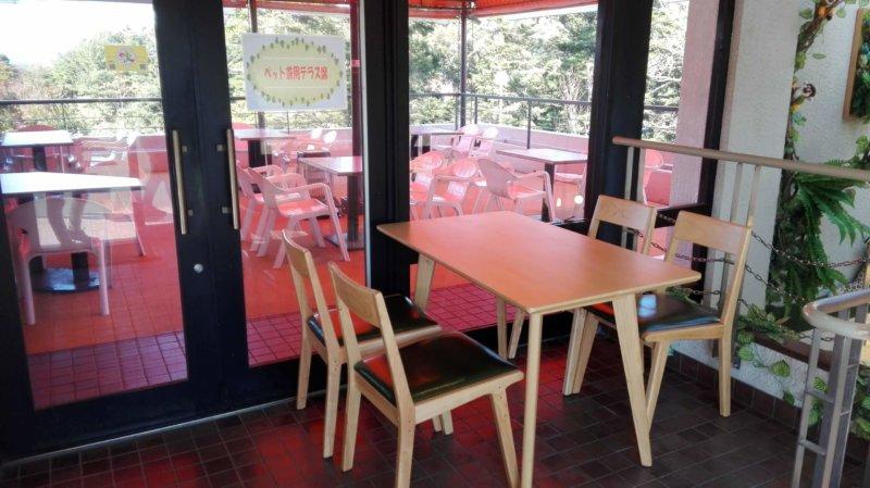 伊豆シャボテン動物公園の和食処 花むすびの犬連れOKのテーブル席