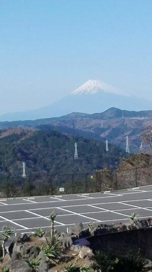 伊豆シャボテン動物公園の富士山見晴らし台からの眺め