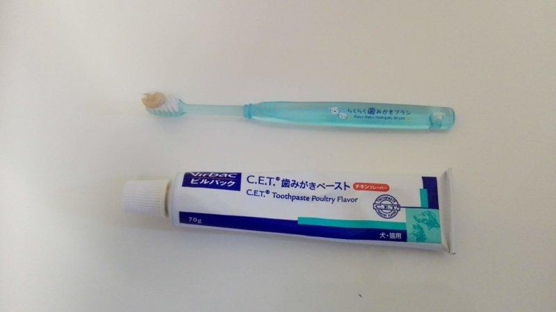 ビルバック歯みがきペーストチキンフレーバーと犬用歯ブラシ