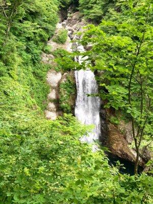 滝見台から見た秋保大滝