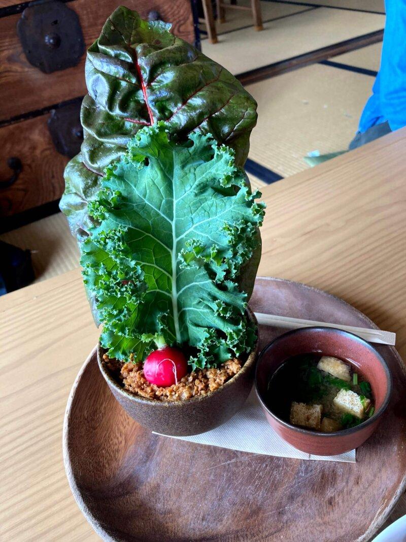 古民家カフェ「アキウ舎」のタコライス「畑のアキウ舎ボウル大豆ミート使用」