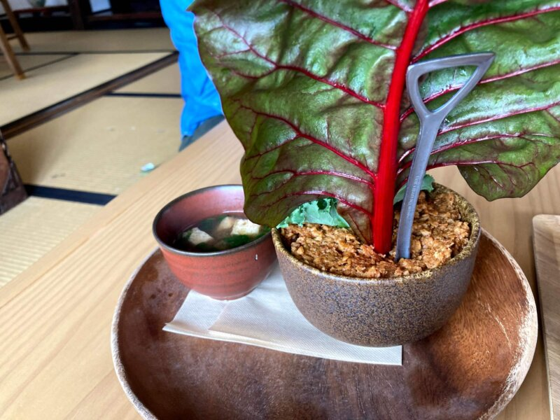 古民家カフェ「アキウ舎」の「畑のアキウ舎ボウル大豆ミート使用」のスコップ
